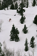 Snow Scenes Prints - A Skier Makes His Way Down A Hill Print by Gordon Wiltsie