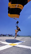 Parachute Jump Prints - A Skydiver From The U.s. Army Golden Print by Michael Wood