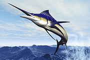 Tropical Fish Posters - A Sleek Blue Marlin Bursts Poster by Corey Ford