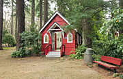 Pine Needles Photos - A small red chapel in a forest Portland OR. by Gino Rigucci