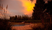 Mendoza Photos - A Small Vineyard And Fine Hotel by Michael S. Lewis