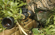 Concentration Posters - A Sniper Dressed In A Ghillie Suit Poster by Stocktrek Images
