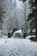 River Scenes Posters - A Snow-covered Footbridge Poster by Marc Moritsch