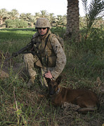 Bonding Metal Prints - A Soldier And His Search Dog Taking Metal Print by Stocktrek Images