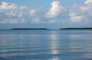 Islamorada Prints - A Special Place in Islamorada Florida Keys Print by Michelle Wiarda