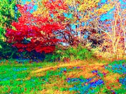 Indiana Autumn Digital Art Prints - A Splash in Color Print by Jan Bonner
