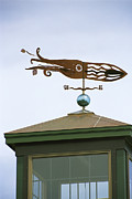 Chatham Prints - A Squid-shaped Weather Vane Atop Print by Darlyne A. Murawski