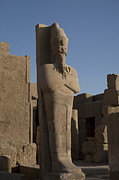 Ankh Framed Prints - A Statue Of Osirus In Karnak Temple Framed Print by Taylor S. Kennedy