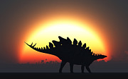 Quadruped Prints - A Stegosaurus Silhouetted Print by Mark Stevenson