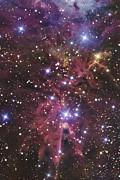 A Stellar Nursery Located Towards Print by R Jay GaBany