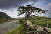 Dark Skies Posters - A Stone Fence Running Along A Road Lake Poster by John Short