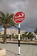 Featured Posters - A Stop Sign With Arabic Script Poster by Taylor S. Kennedy