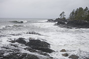 Port Renfrew Framed Prints - A Storm Lashes The Coastline Of British Framed Print by Taylor S. Kennedy