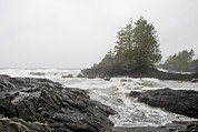 Port Renfrew Framed Prints - A Storm Lashes The Pacific Coastline Framed Print by Taylor S. Kennedy