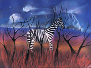 Zebra Pastels - A Stormy Night for a Zebra  by Caroline Peacock