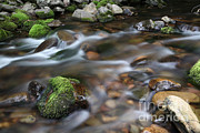 Smoothed Framed Prints - A Stream In Nova Scotia Framed Print by Ted Kinsman