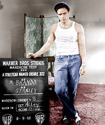 1950s Portraits Photo Acrylic Prints - A Streetcar Named Desire, Marlon Brando Acrylic Print by Everett