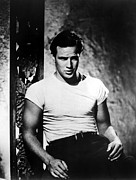 Films By Elia Kazan Photo Posters - A Streetcar Named Desire, Marlon Poster by Everett