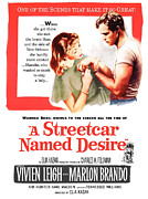 1950s Movies Framed Prints - A Streetcar Named Desire, Vivien Leigh Framed Print by Everett