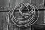 Concern Framed Prints - A Study of Wire in Gray Framed Print by Douglas Barnett