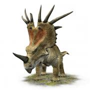 Dinosaurs Posters - A Styracosaurus With A Massive Horned Poster by Renegade 9