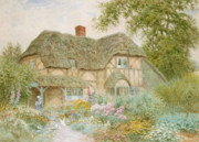 Thatch Framed Prints - A Surrey Cottage Framed Print by Arthur Claude Strachan