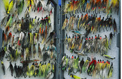 Flies Framed Prints - A Tackle Box Full Of Colorful Flies Framed Print by Bill Curtsinger