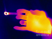 Fire Burns Metal Prints - A Thermogram Of A Lit Cigarette Metal Print by Ted Kinsman