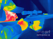 Hot Gun Framed Prints - A Thermogram Of A Man Holding A Rifle Framed Print by Ted Kinsman