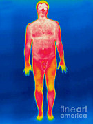 Nude Men Posters - A Thermogram Of A Nude Man Poster by Ted Kinsman