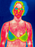 Brassiere Framed Prints - A Thermogram Of A Woman In A Bra Framed Print by Ted Kinsman
