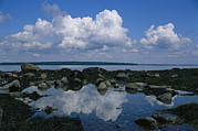 Maine Scenes Prints - A Tidal Pool Reflects The Stark Beauty Print by Stephen St. John