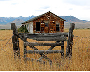 Old Cabins Framed Prints - A Time For Rest Framed Print by Lydia Warner Miller