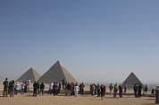 Photos Of Animals Prints - A Tourist Crowd At The Great Pyramids Print by Taylor S. Kennedy