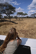 Tarangire Prints - A Tourist Views African Game Print by Tim Laman