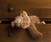Drawers Posters - A Traditional Toy A Childs Teddy Bear Poster by Marlene Ford
