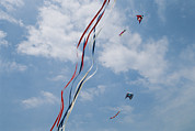 Kites Photos - A Train Of Kites Flies At The Jockeys by Stephen Alvarez