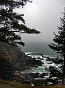 Surf Photos Art Posters - A Tricky Acadian Cove Poster by Skip Willits