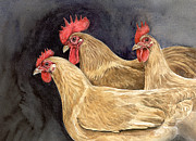 Cockerel Paintings - A Trio of Buff Rock Chickens by Chris Pendleton