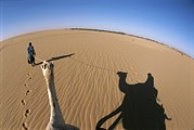 Ethnic And Tribal Peoples Posters - A Tuareg Tribesman Leads His Camel Poster by Carsten Peter