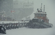 Snow Scenes Art - A Tugboat And Freighter At Dock by Medford Taylor
