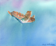 Baby Sea Turtle Paintings - A Turtles Flight by Tracy L Teeter