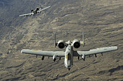 Gunship Prints - A Two-ship A-10 Thunderbolt Ii Print by Stocktrek Images