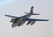 Prowler Photos - A U.s. Marine Corps Ea-6b Prowler by Stocktrek Images