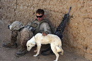Taking A Break Framed Prints - A U.s. Marine Pets A Dog While Taking Framed Print by Stocktrek Images