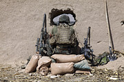 Sacks Framed Prints - A U.s. Marine Sniper Observes Framed Print by Stocktrek Images