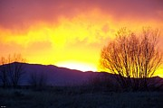 Michael Maynor Art - A Utah Sunset by Michael Maynor