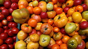 Vegetable Stand Prints - A Variety of Fresh Tomatoes - 5D17812-long Print by Wingsdomain Art and Photography