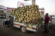 Cauliflower Photos - A Vegetable Truck Overloaded by Taylor S. Kennedy