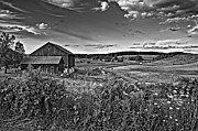Plowed Fields Framed Prints - A Verdant Land monochrome Framed Print by Steve Harrington